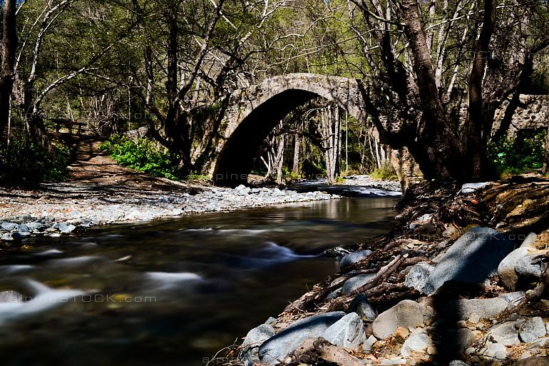 Tselefos Victorian Bridge in forest