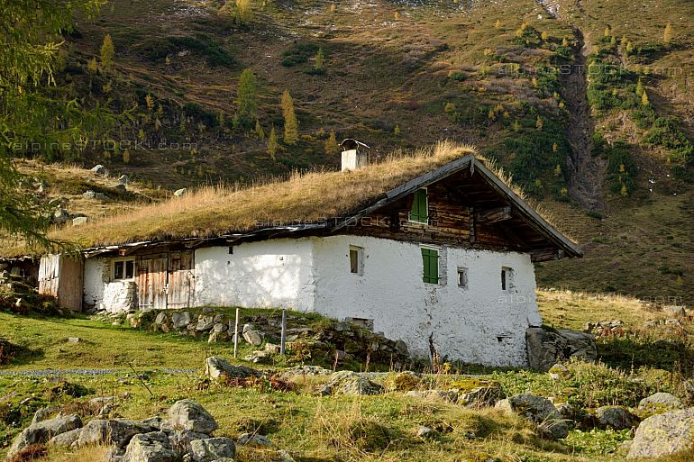 traditional alpine hut with grass roof