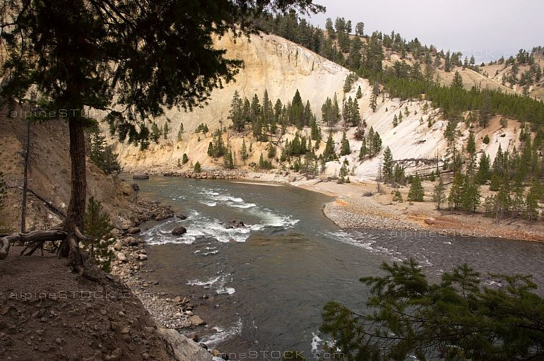 Colorado River at Yellowstone Park, Utah, USA