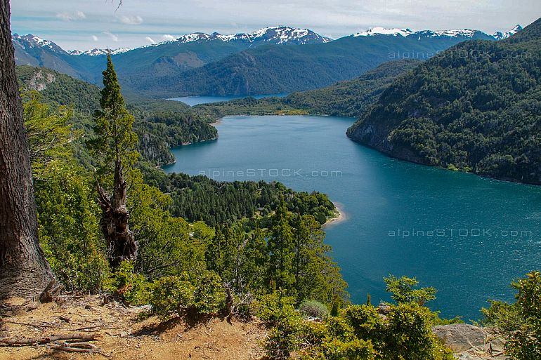 view at lago verde lake at Los Alerces national park, Argentina