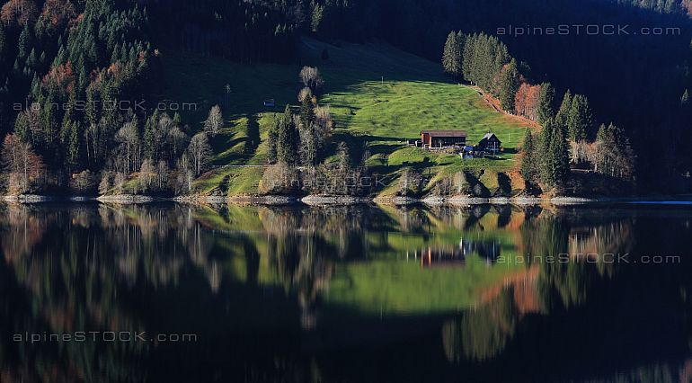 Farm and forest mirroring in a Swiss lake Waegitaler See