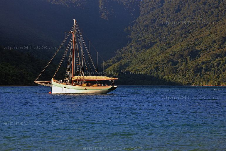 Sailing boat in a bay of the Marlborough Sounds