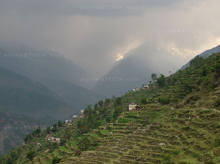 Terraced fields in Landruk Annapurna
