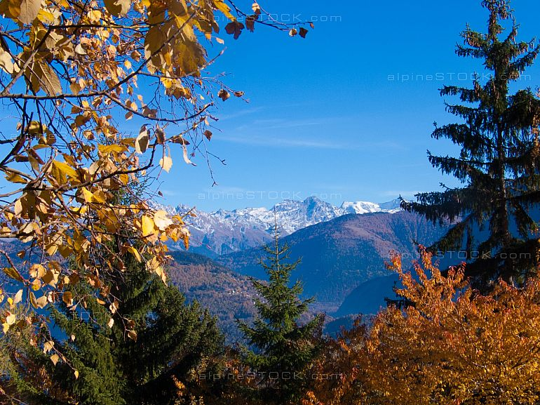 Mountain View from La Ravoire with coloful trees in autumn