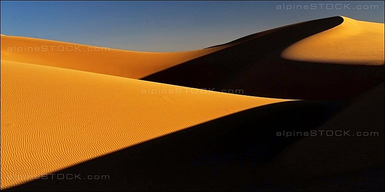 Golden Sahara Shadows