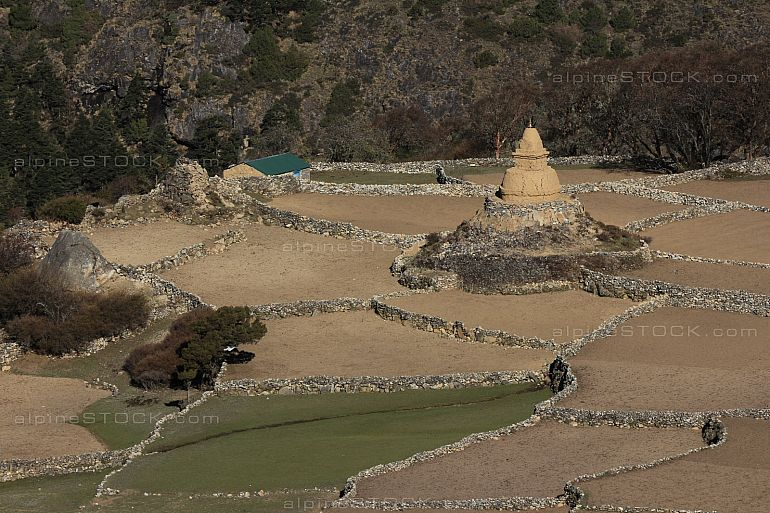 Old stupa and fields in Phortse