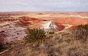 Rote Felsen im Petrified-Forest-National-Park, Arizona, USA