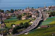 Vineyards and road at Lac Leman Lavaux UNESCO