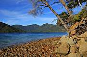 Endeveaour Inlet, bay in the Marlborough Sounds