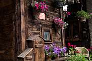 flower on an old wooden house