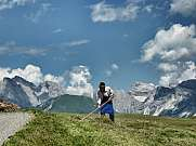 Farmer harvesting alpine meadow Alpe di Siusi