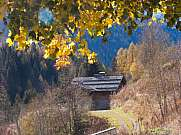 foliage in autumn day and alpine hut