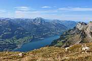 Lake Walensee view from Chaeserrugg