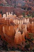 Morgen im Bryce Canyon Nationalpark