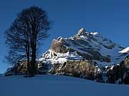 Beautiful winter scenery in Braunwald Ortstock