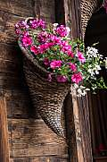 flower detail in a basket