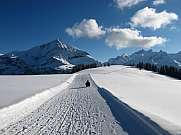 Sledge ride near Gstaad Spitzhorn