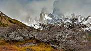 Fitz Roy in patagonia