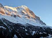 Eiger in morning light seen from Grindelwald