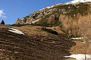 Brown alpine meadow in early spring