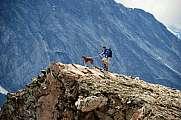 Climber with dog in front of the Monte Leone