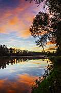 Colorful sunset at the river with trees silhouettes Spain