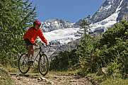 Mountainbiken in den Walliser Alpen