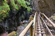 Mixnitz Valley Austria Wooden Stairs and water