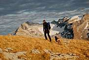 Hiker with dog on Silberen in front of Glärnisch