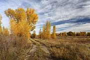 Rio Grande State Wildlife Area Colorado USA