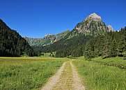 Trail in the Oberseetal and Mt Brunnelistock
