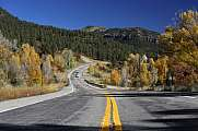 Highway 160 San Juan National Forest im Herbst