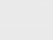 wonderful springtime view of mountains and lake with blooming fruit tree