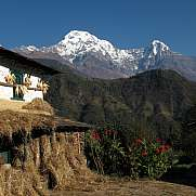 Drying corn on a facade and Annapurna South