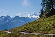 alpine path against Weisshorn and Bishorn