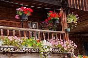 Flowers on old houses Grand-Bornand Chinaillon
