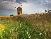 old windmill near a corn field with green meadow