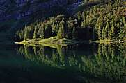 Forest mirroring in lake Seealpsee