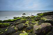 Green moss and soft sea at South Head St. Bees Head Heritage Coa