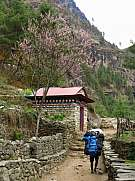 Porter on the way from Lukla to Namche Bazar